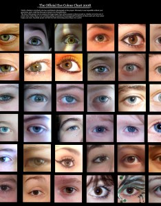 Eye colour chart by delpigeon also human  the si gh  rh eyemakeart wordpress