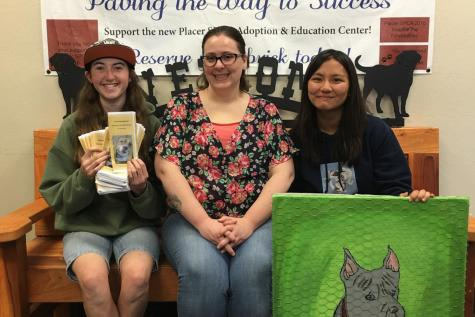 Sophomore shows SPCA support with art