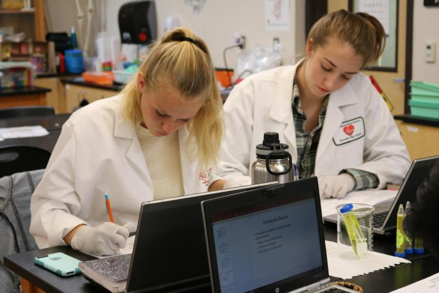 Seniors work on a lab in Principles of BioMedical Science.