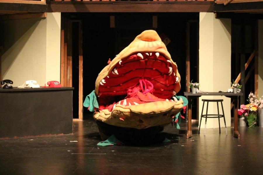 REVIEW: RHS Theatre Company's Little Shop of Horrors