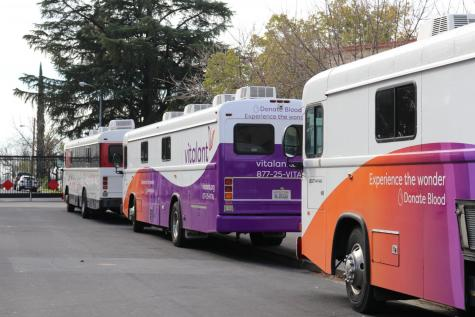 Blood Drive trucks lined up on Campo Street.