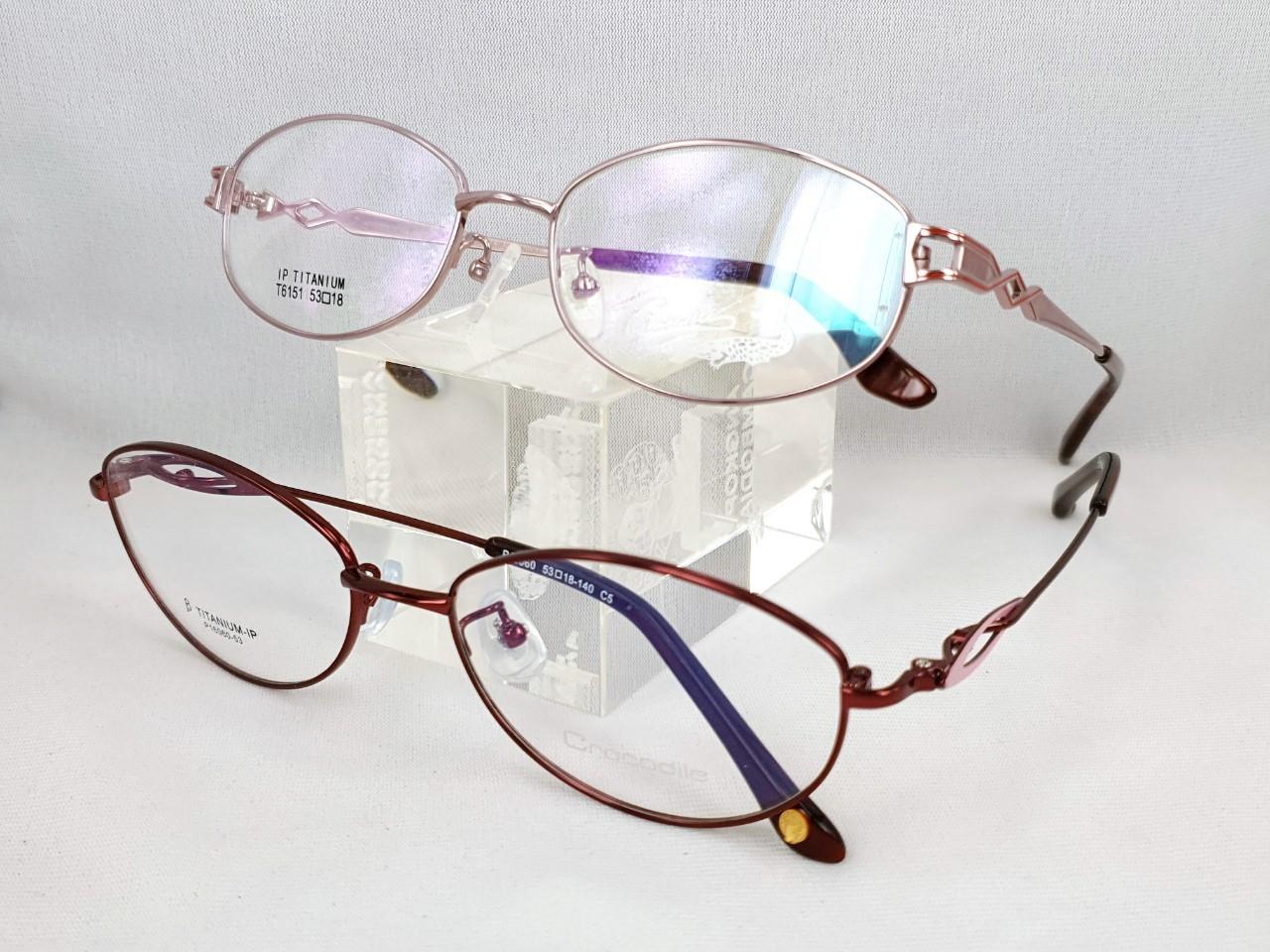 民視眼鏡品牌Crocodile純鈦_200102_0007