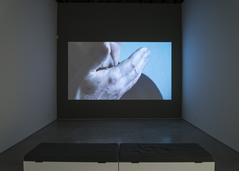Imogen Stidworthy I Hate 2007 Single-channel HD video 7:10 minutes Courtesy of the artist; Matt's Gallery, London; Lisa Cooley, New York Photography: Cary Whittier