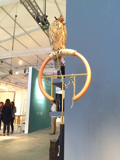 """Posa' by Massimo Faion presented by Carwan Gallery. AN installation of four collectible falcon perches, complete with a live falcon. Photograph by Vikki Tobak, 2015"