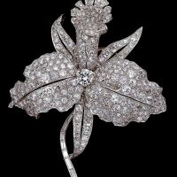 Exquisite Diamond Brooches and Necklaces