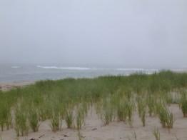 foggy morning on a beach in Cape Cod