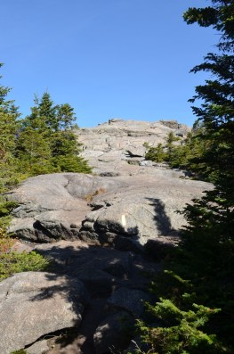 the rock outcrop starts