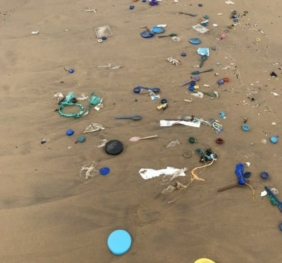 A trail of plastic marks the tide line