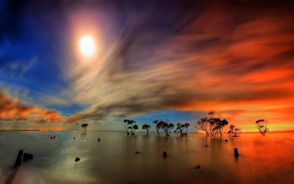 amazing beautiful unique nature