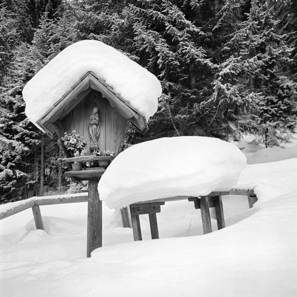 Alberto Bregani Madonna della Neve