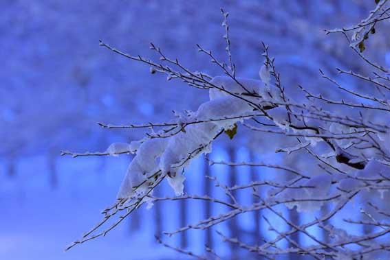 REGAZZONI Stefano_Di-Notte_Lamda 120x80 su plexiglass