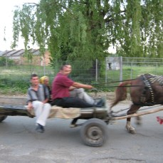 Racing Gypsies, Suceava