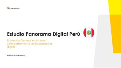 Panorama Digital del Perú 2020