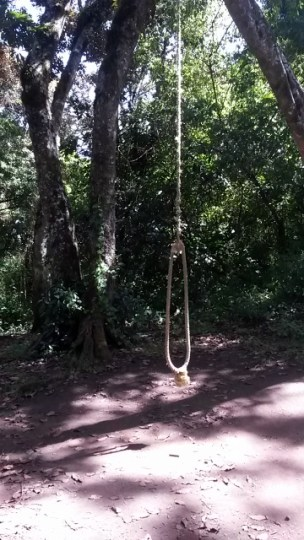 Another swing