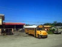 Standard yellow buses