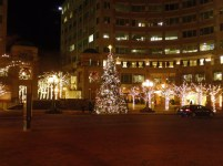 Christmas tree in Reston Town