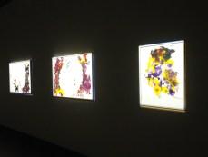 Mavis Tauzeni, Untitled series (2014), oil on paper.