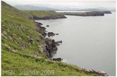 Irlandeses en Barakaldo (siglo XVIII)