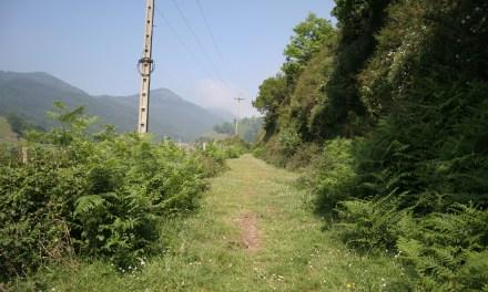 Los ferrocarriles mineros en el País Vasco (IV)