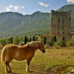 Ruta al nacimiento del Cadagua y otros rincones del Valle de Mena
