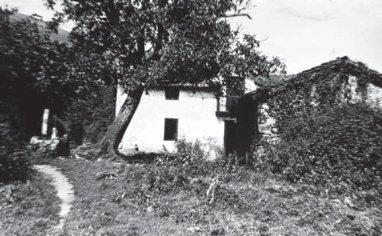 mesperuza-11