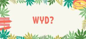 "What Do ""WYD"" and ""HYD"" Mean, and How Do You Use Them?"