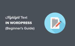How to Highlight Text in WordPress (Beginner's Guide)
