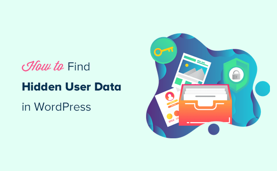 Finding hidden user data in WordPress