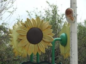 park_art_sunflower