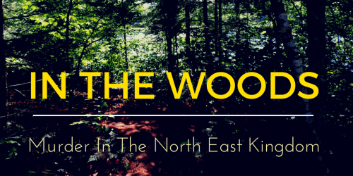 IN THE WOODS twitter land