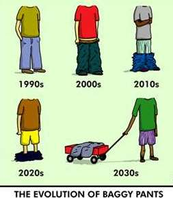 evolutionbaggy