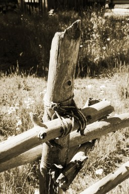 Roped Fencepost