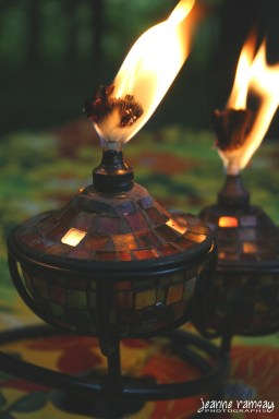 Tabletop torches