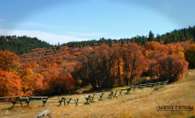 Castlewood Canyon Ruins