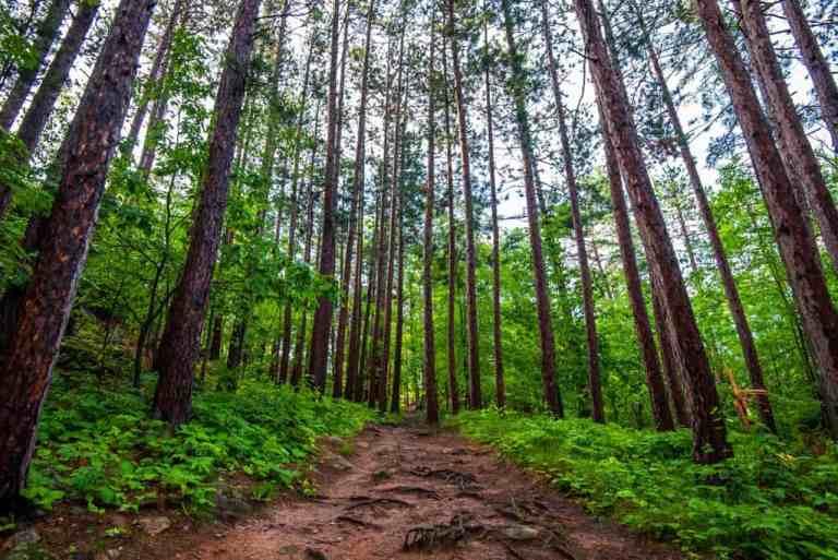 Upper Peninsula Hiking: Sugarloaf Mountain