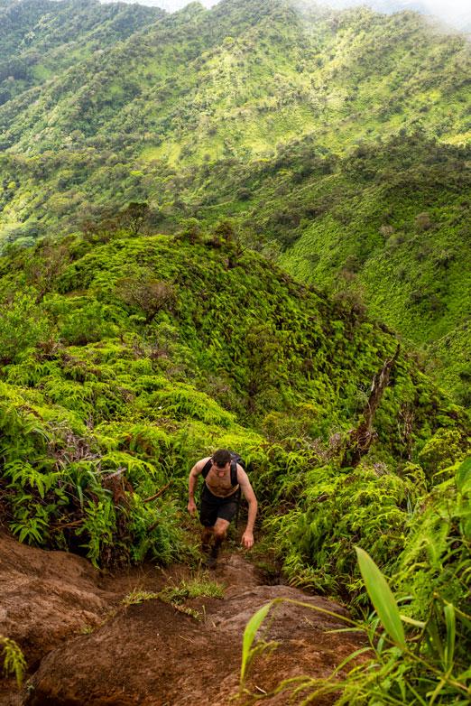 Ka'au Crater Hike Ridge