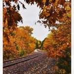 Marquette Fall Colors