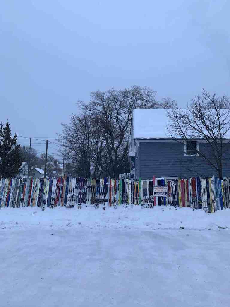 Noquemanon Ski Marathon 2020: Marquette, MI