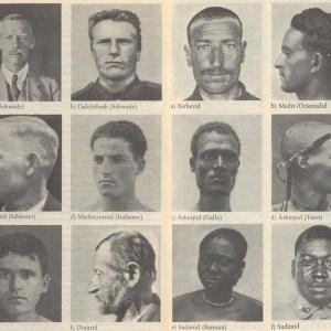 Нацистская расовая теория