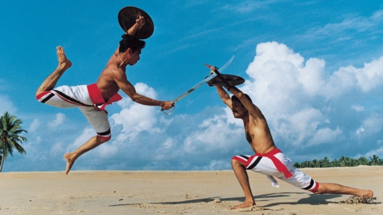 боевые искусства востока