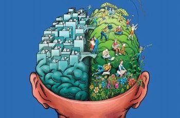 Негативные вещи влияющих на мозг