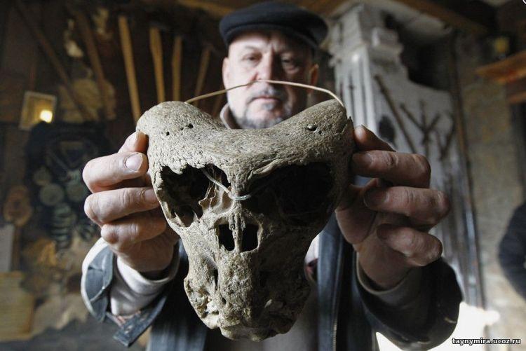 черепа аненербе