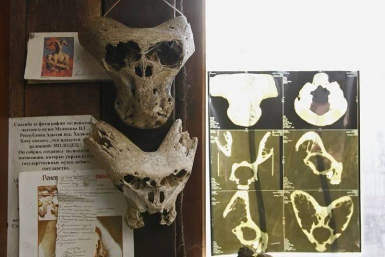 Неизвестные черепа Аненербе. Тайна раскрыта