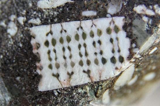 Древние артефакты. Сенсационная находка чип в камне