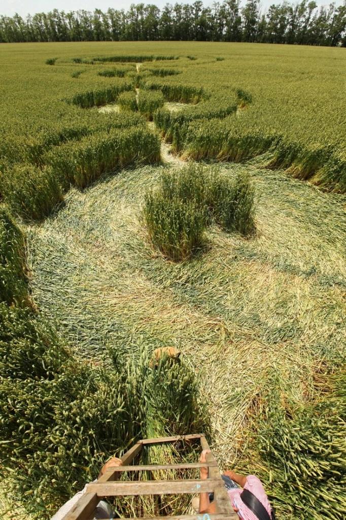 Круги на полях 45-й параллели. Краснодарский край