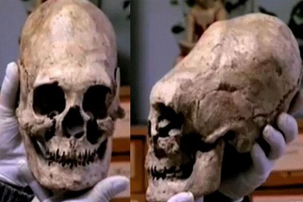 Череп с третьего Заюковского могильника