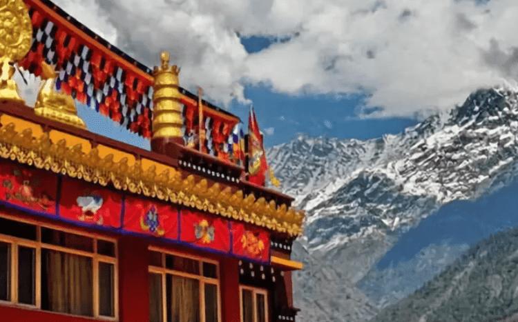 Клиника тибетской медицины. 100 лет положительных отзывов