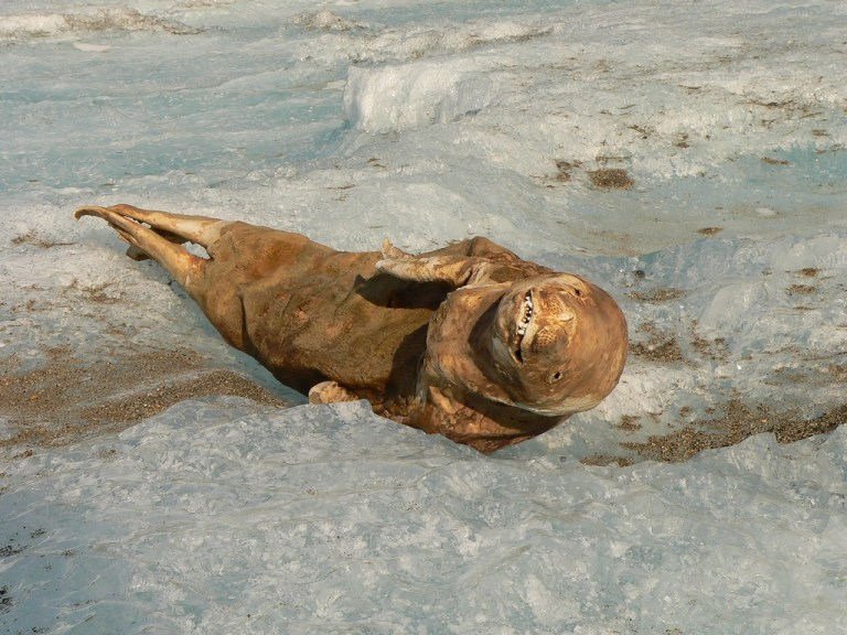 12 жутких случаев, находки во льдах
