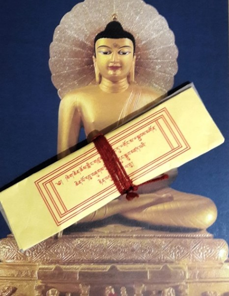 Мани рильбу – пилюли Далай-ламы умеющие размножаться