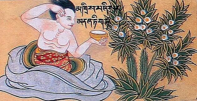 Рак легких. Тибетская медицина